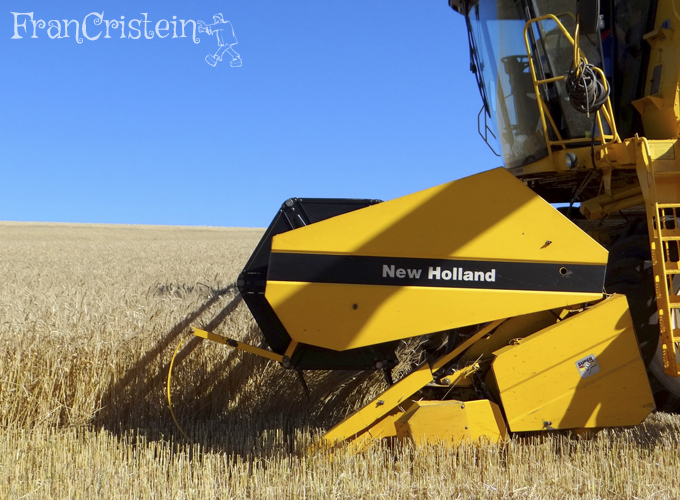 New Holland TC59 amarela (cor linda também)