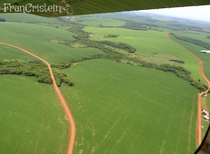 Outra coxilha linda, reparem nos rastros do pulverizador feitos pelo GPS: super retos!