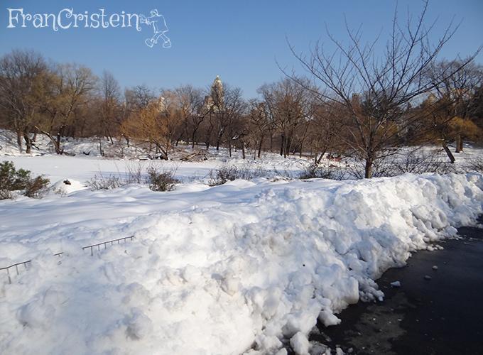 Está acabando a criatividade para legendas de fotos com neve