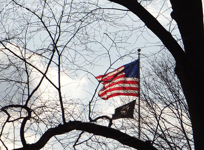 Bandeira dos Unaited Isteites