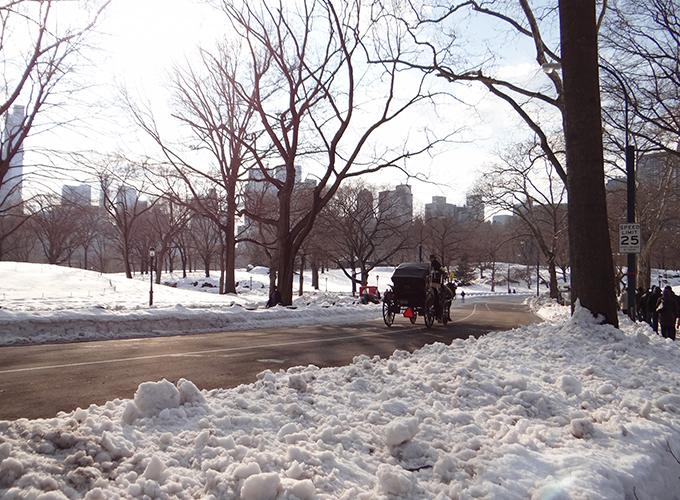 Passeios pelo Central Park