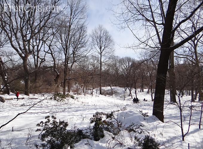 E do outro lado o Central Park lindo como sempre