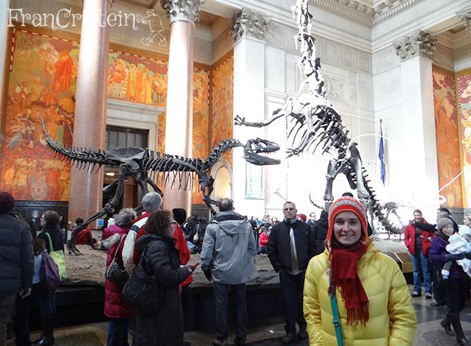 Lindos dinossauros já na entrada