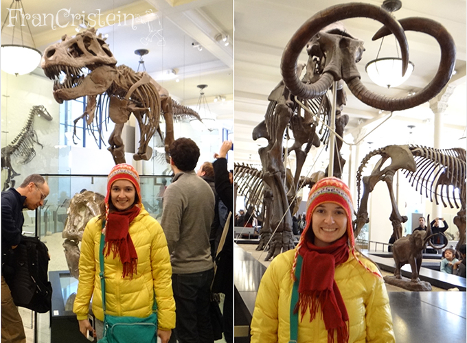 T-Rex e um mamute pequenino, não sabia voar...