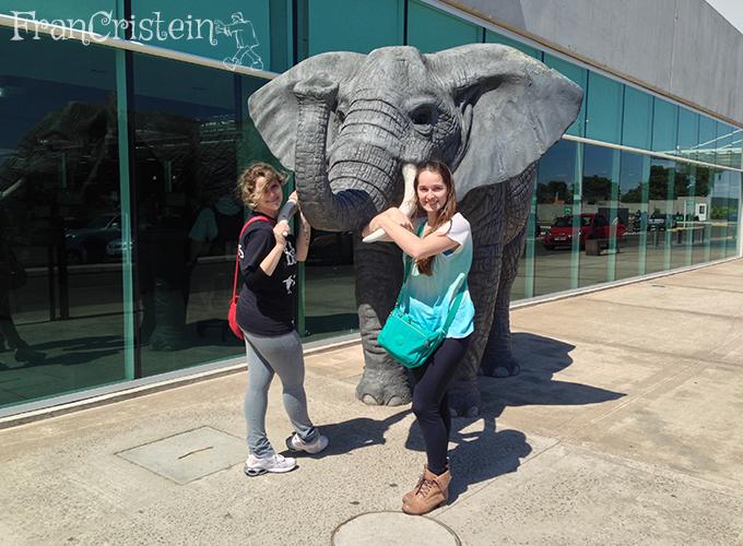 Elefante (?) na porta principal do Shopping