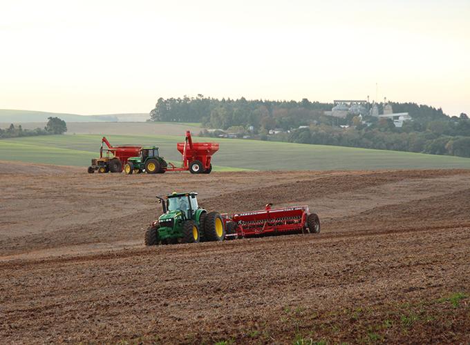 Iniciamos o plantio do trigo