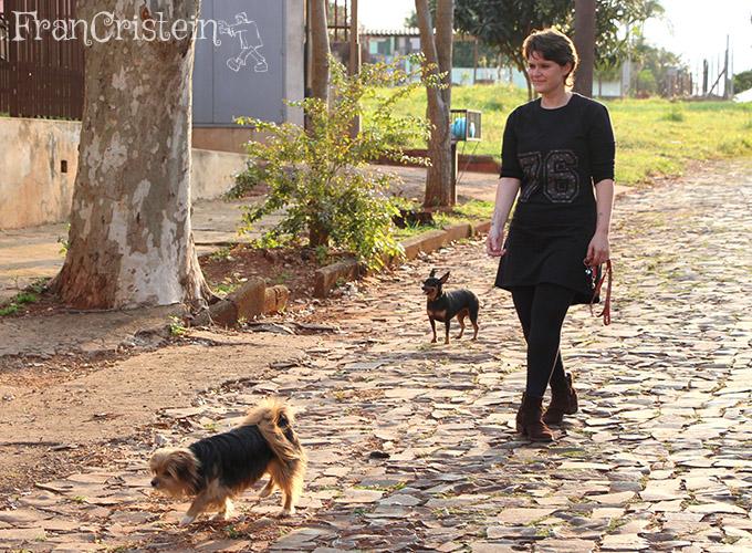 Chegando perto de uns cachorros acoativos