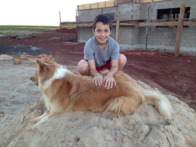 Lassie que estava querendo perseguir um quero-quero e Bi da mana