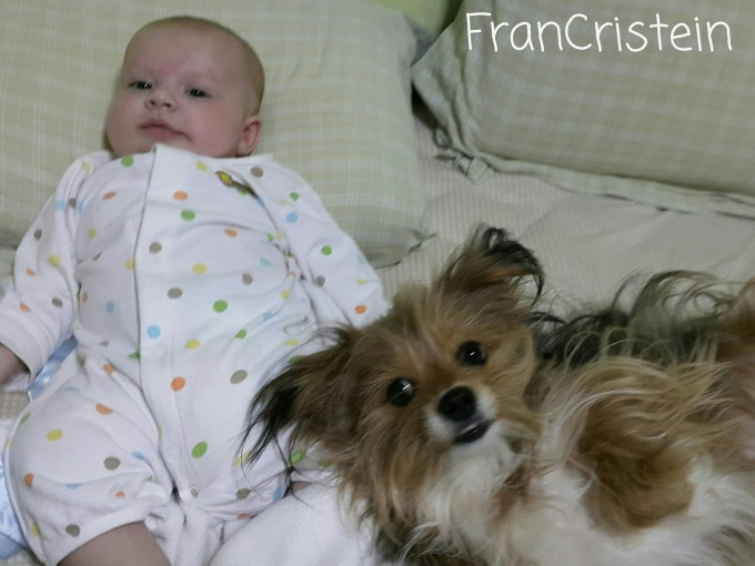 Babies + dogs = ♡